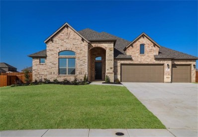 407 Bent Tree Avenue, Oak Point, TX 75068 - #: 13917431