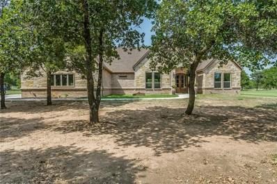 106 Treeline Court, Lipan, TX 76462 - #: 13919828