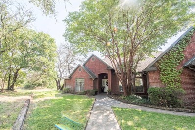 133 Woodland Hills Drive, Aledo, TX 76008 - MLS#: 13919996