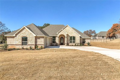 3904 De Cordova Ranch Road, Granbury, TX 76049 - MLS#: 13920064