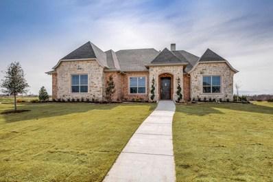 1003 Balgair Street, Caddo Mills, TX 75135 - #: 13921285