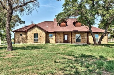 1010 Brown Road, Palo Pinto, TX 76484 - MLS#: 13921338
