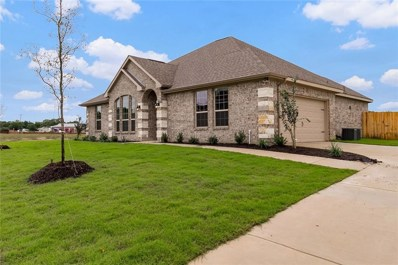 900 Royse Ridge Road, Ennis, TX 75119 - MLS#: 13923868
