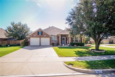 9817 Havenway Drive, Denton, TX 76226 - MLS#: 13925184