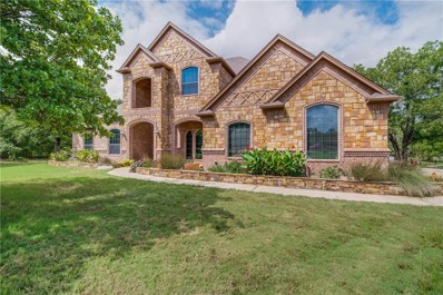551 County Road 3798, Springtown, TX 76082 - MLS#: 13930694