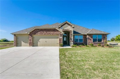 5209 Trail House, McKinney, TX 75071 - #: 13938795