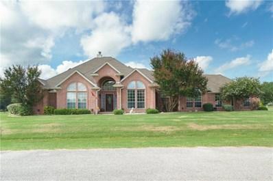 10029 Yeoman Lane, Fort Worth, TX 76179 - MLS#: 13940856