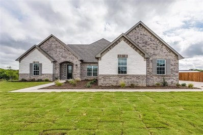 11016 Chriswood Drive, Crowley, TX 76036 - #: 13941396