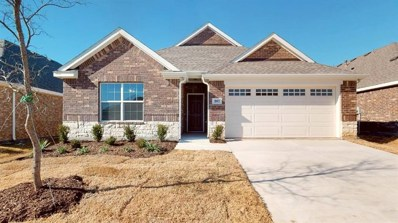2617 Centurion Road, Glenn Heights, TX 75154 - #: 13943298