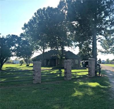 9501 S Us Highway 377 S, Collinsville, TX 76233 - #: 13944006
