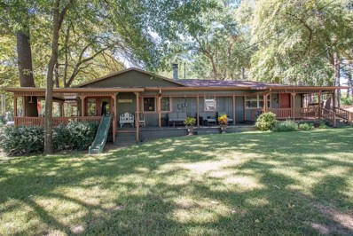 13835 Lakeview  Dr., Eustace, TX 75124 - MLS#: 13949092