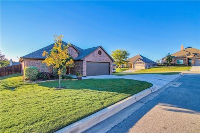 317 Red Drive, Aledo, TX 76008 - #: 13949842