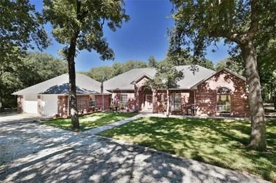182 Santa Elena Drive, Nocona, TX 76255 - #: 13950670