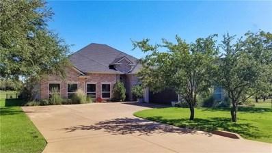 27055 Stonewood Drive, Whitney, TX 76692 - MLS#: 13951566