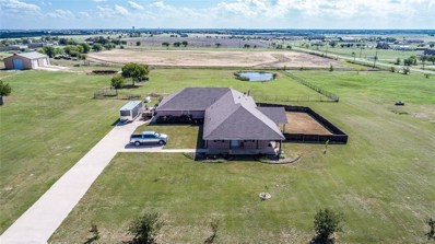 6229 High Meadows Drive, Krum, TX 76249 - #: 13952157