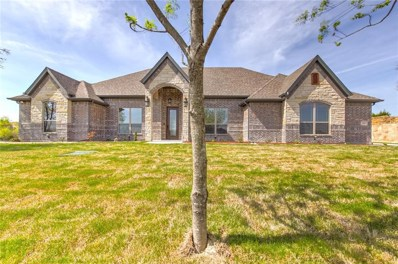 337 Kenyon Court, Granbury, TX 76049 - MLS#: 13961252