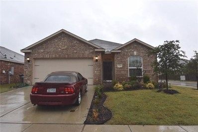 6300 Trinity Creek Drive, Fort Worth, TX 76179 - MLS#: 13961657