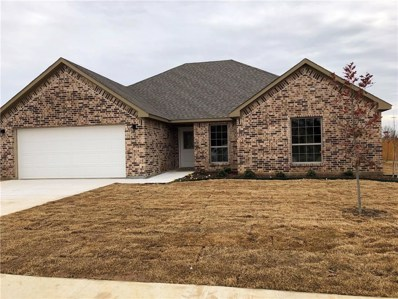 117 Wildflower Drive, Whitesboro, TX 76273 - #: 13962474