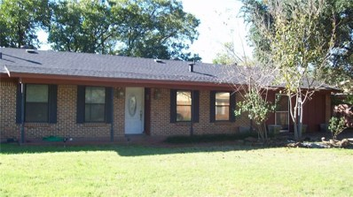 2302 SE 11th Street, Mineral Wells, TX 76067 - #: 13962787