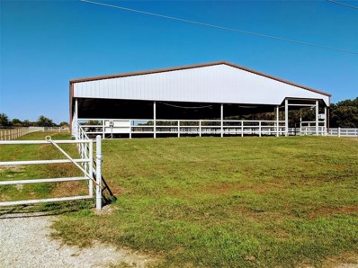 289 County Road 182, Gainesville, TX 76240 - MLS#: 13962826