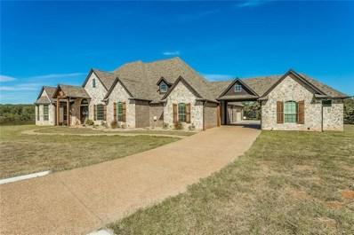 125 Creek Meadow Court, Lipan, TX 76462 - #: 13965743