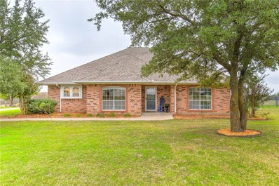 1141 Riverview Drive, Cleburne, TX 76033 - MLS#: 13969571