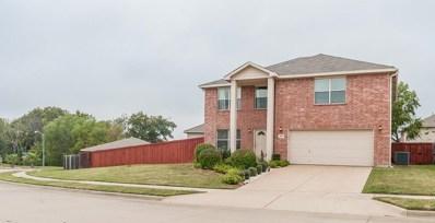 1027 Crow Court, Dallas, TX 75051 - #: 13970934