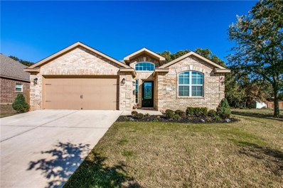 2509 Summer Trail Drive, Denton, TX 76209 - #: 13971967