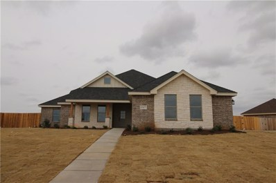 6726 Tradition Drive, Abilene, TX 79606 - #: 13972004