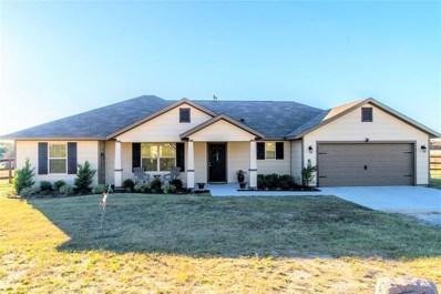 160 Blue Sky Lane, Springtown, TX 76082 - MLS#: 13973577