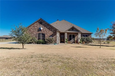 5685 Wilton Terrace, Dish, TX 76247 - #: 13974599
