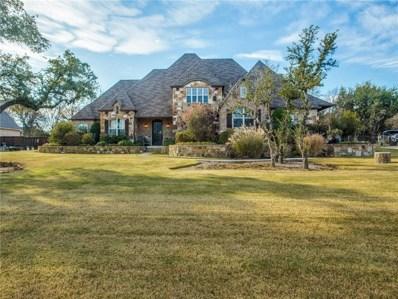 122 Turkey Creek Drive, Aledo, TX 76008 - #: 13981215