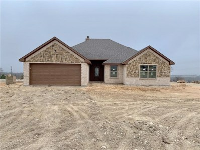 217 Timber Valley Court, Weatherford, TX 76085 - #: 13981487