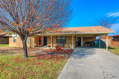 307 Spring Creek, Valley View, TX 76272 - #: 13985507