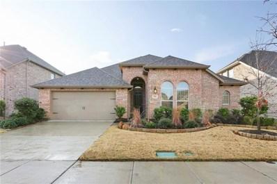 9916 Trinity Drive, Little Elm, TX 75068 - #: 13988111