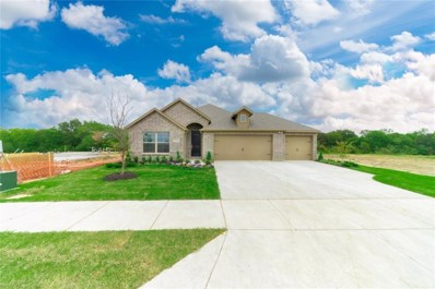 2009 Angus Drive, Little Elm, TX 75068 - MLS#: 13988226