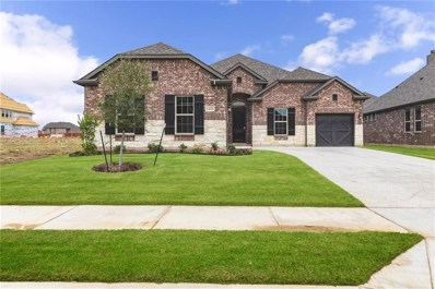 1408 Carlet Drive, Little Elm, TX 75068 - #: 13990804