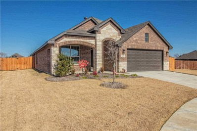 2100 Swenson Ranch Trail, Fort Worth, TX 76134 - MLS#: 13994017
