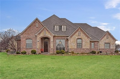 13159 Willow Ranch Way, Fort Worth, TX 76052 - #: 13995924