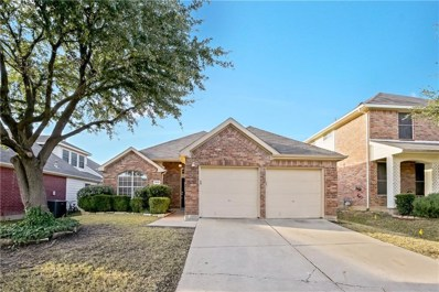4628 Buffalo Bend Place, Fort Worth, TX 76137 - #: 13997857
