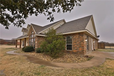 249 Tweetie Pie Lane, Abilene, TX 79602 - #: 13998685