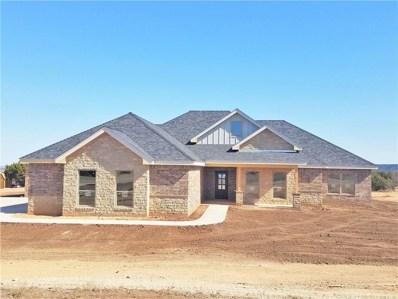 273 Edge Cliff Court, Abilene, TX 79606 - #: 13998719