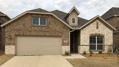 1200 Horsetail Drive, Little Elm, TX 75068 - #: 14000520