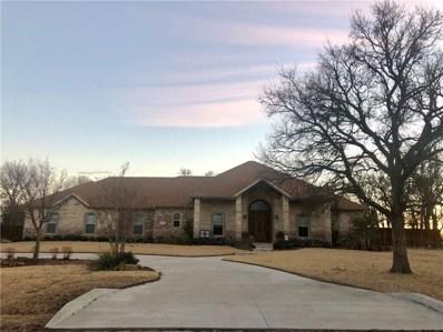 164 Timber Ridge, Graham, TX 76450 - #: 14000590