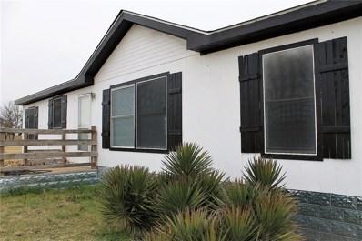 1550 Wild Horse Lane, Stephenville, TX 76401 - #: 14002570