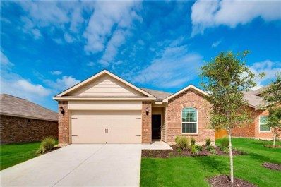 6113 Obsidian Creek Court, Fort Worth, TX 76179 - #: 14002993