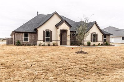 3916 Upper Lake Circle, Granbury, TX 76049 - #: 14004561