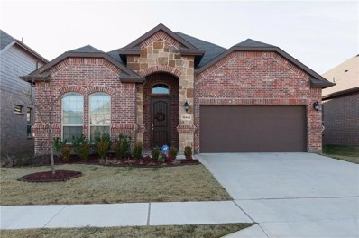 12849 Palancar Drive, Fort Worth, TX 76244 - #: 14006259