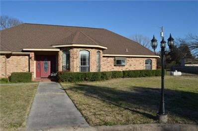 101 David Street, Springtown, TX 76082 - #: 14008402