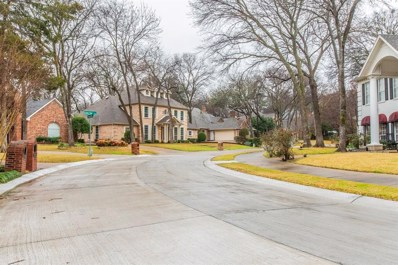 2908 Green Tree, McKinney, TX 75072 - #: 14010030